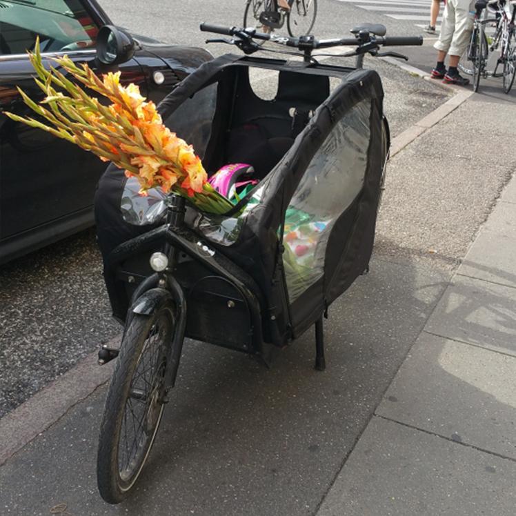bike_flowers